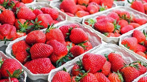 Haal verse producten op de markt in Harderwijk
