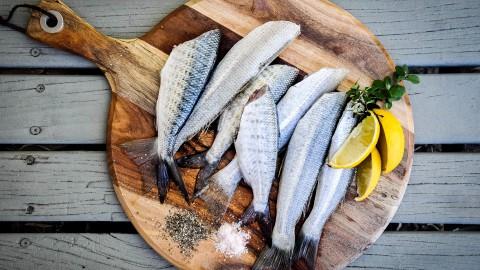 Ook 2de pinksterdag kan je een lekker visje halen in Harderwijk